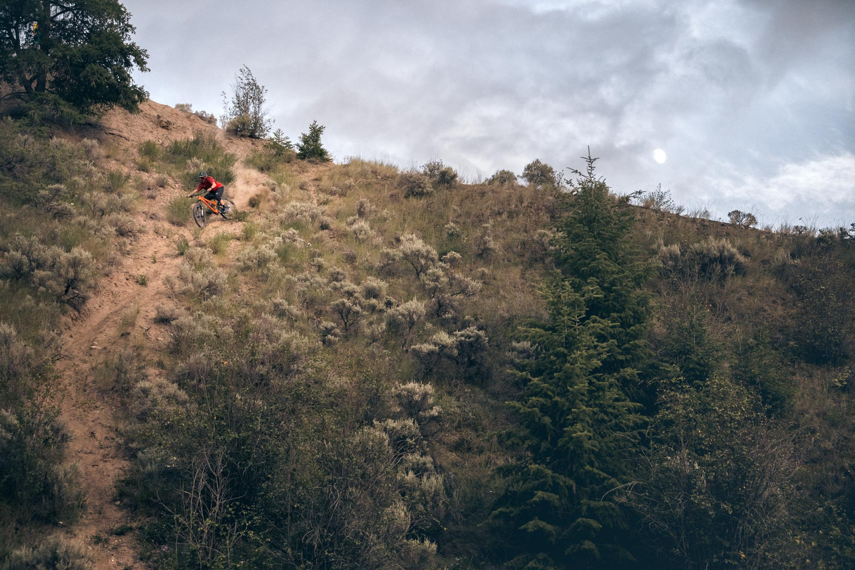 Mountain bike athlete descending in interior British Columbia, Canada