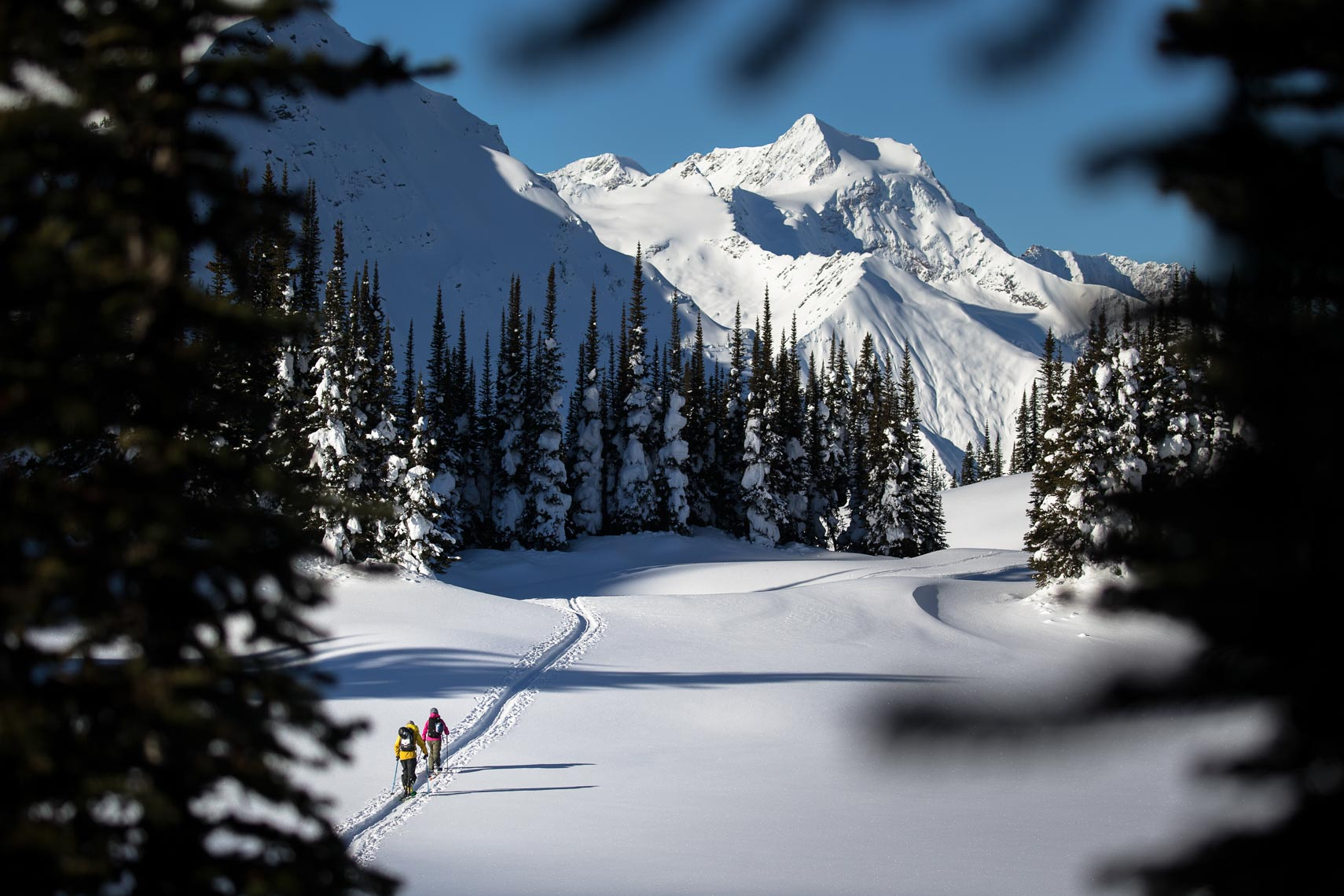 Ski touring in interior BC in the winter