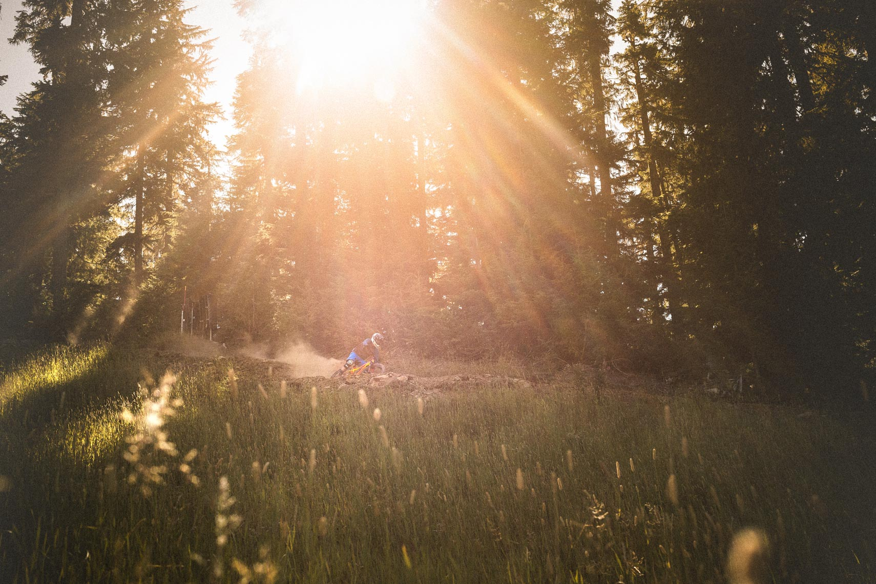 Sun flare in the Whistler bike park with a mountain biker