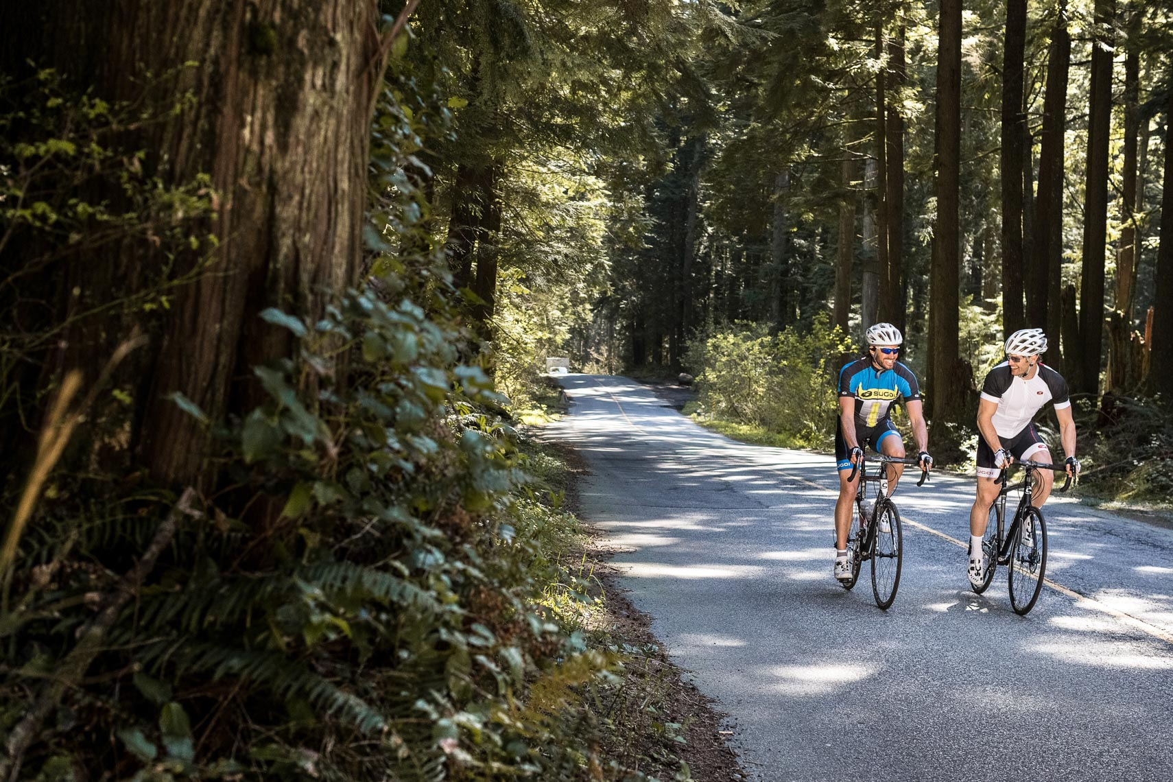 Two road cyclists in the forest of North Vancouver