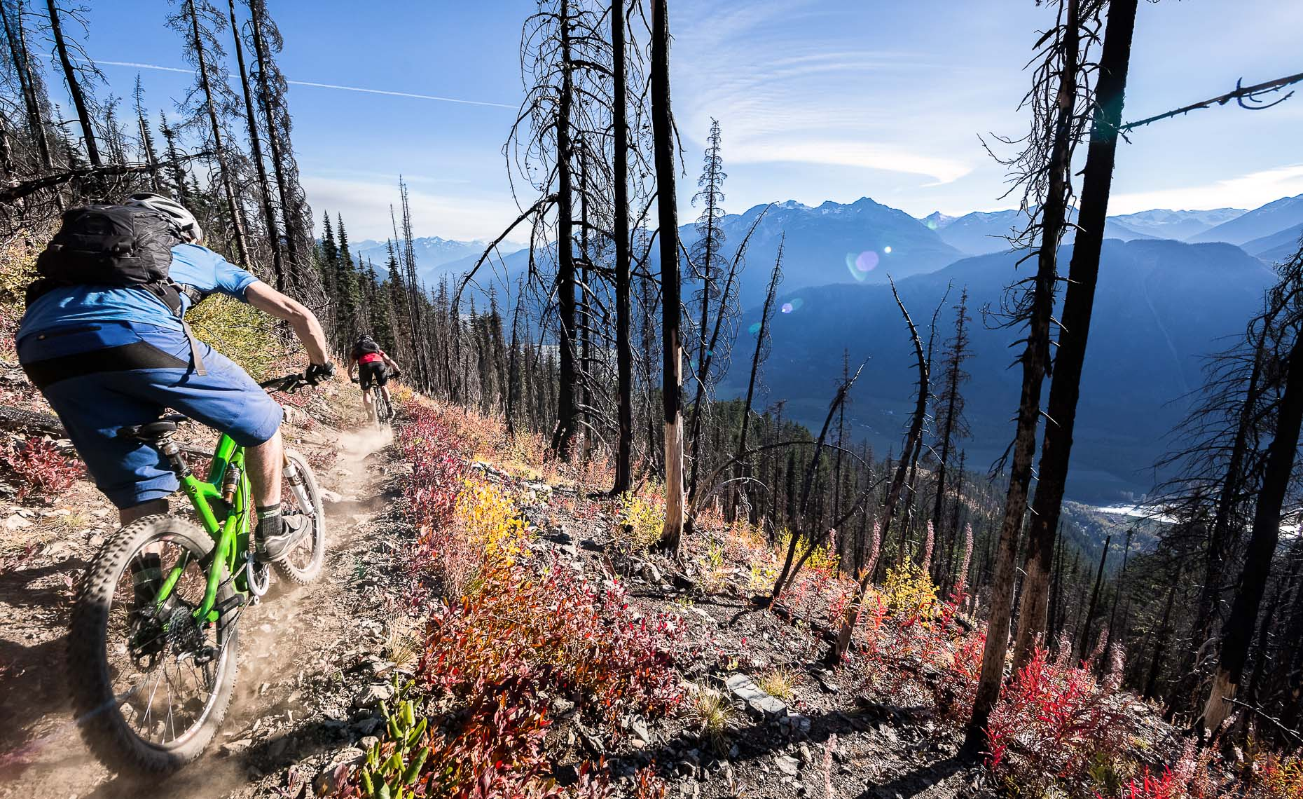 Burned trees and mountain landscape with mountain bike athlete.