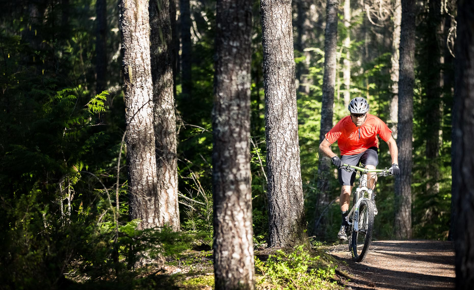 Mountain bike photographer in the forest in whistler