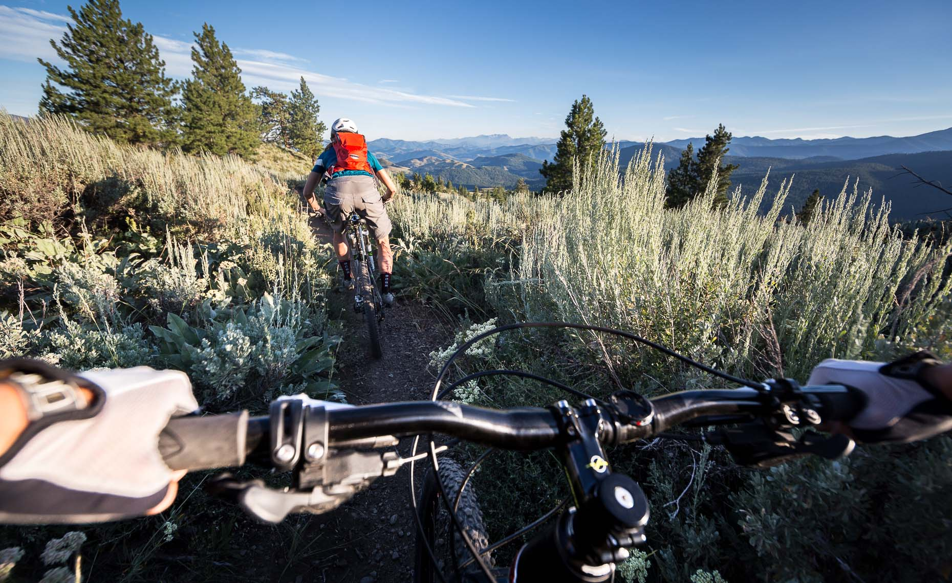 Point of view handlebars mountain bike riders
