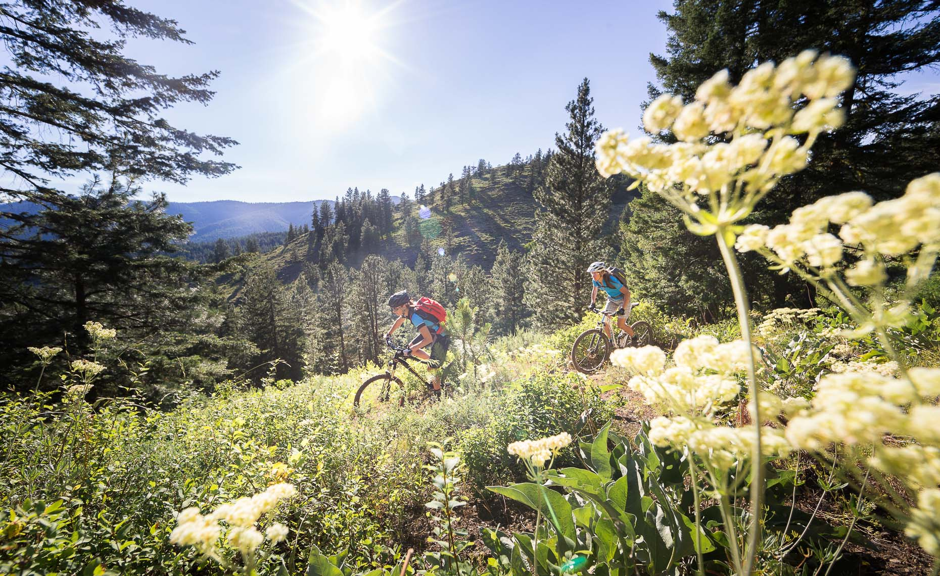 Platypus equipment is featured in a mountain bike shoot by whistler photographer
